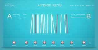 Native Instruments Hybrid Keys
